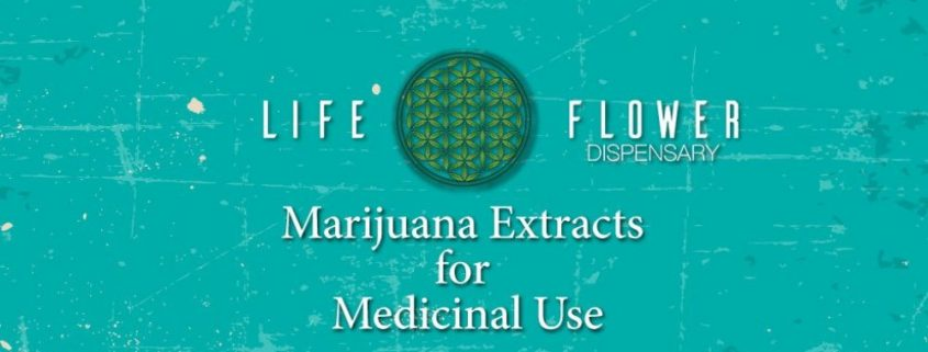 marijuana extracts for medicinal use from a Denver Dispensary