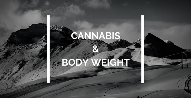 cannabis and body weight